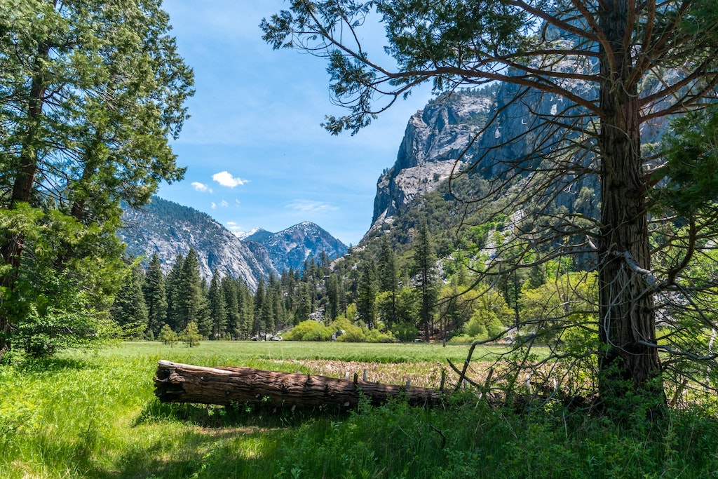 Sequoia & Kings Canyon National Park USA Photo Collection